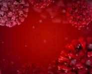 Какой кашель указывает на коронавирус COVID-19, объяснили медики