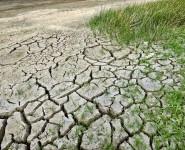 В 2050 году планета может достичь критической температуры